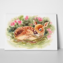 Watercolor fawn baby deer laying 284852801 a