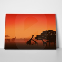 African wildlife sunset 4 a