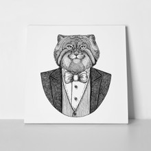 Wild cat manul hipster 623179583 a
