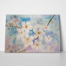 Hand painted watercolor beautiful sakura blossom 397661044 a