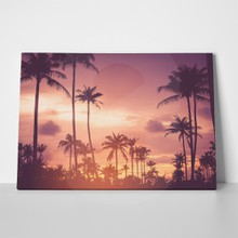 Tropical sunset palm trees vacation landscape 522651094 a