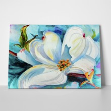 Original watercolor dogwood blossom 486254650 a