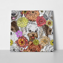 Labradoodle pattern dog friends 598047578 a