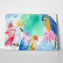 Parrot watercolor cockatoos macaws 514210690 a