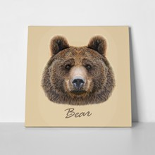 Illustrated portrait bear 339049613 a