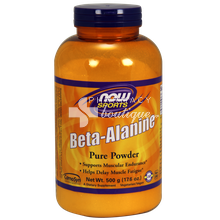 Now Sports BETA-ALANINE Powder (100% Pure) - Vegetarian 500 gr