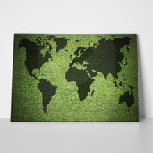 World map in green grass 211585996 a
