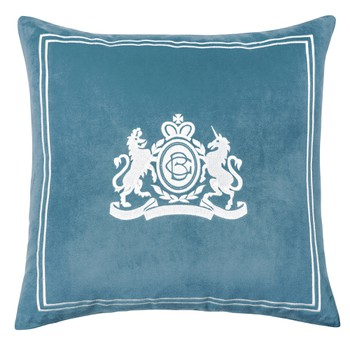 Velvet Pillow in Aqua Colour