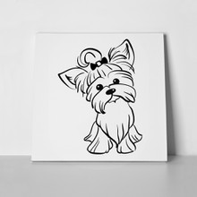 Sketch funny yorkshire terrier 435137131 a