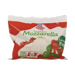 SHARDINGER MOZZARELLA ΦΡΕΣΚΙΑ 125 gr