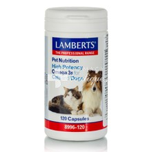 Lamberts Pet Nutrition High Potency Omega 3s for Cats & Dogs - Υγεία Δέρματος, 120caps