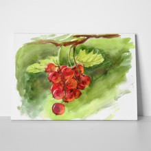 Watercolour berries a