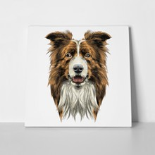Border collie colored drawing 694496929 a