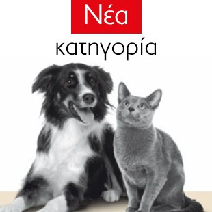 Pets - New Category