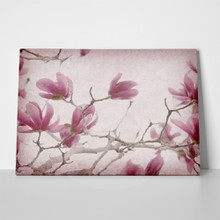 Magnolia flowers on old paper background 1014318358 a