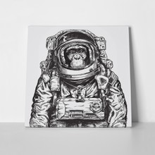 And drawn monkey astronaut 482272471 a