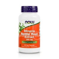 NOW - Stinging Nettle Root Extract 250mg - 90caps