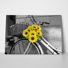 Sunflowers on bicycle 222569653 a