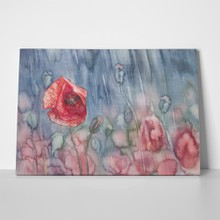 Poppy against rain 522579793 a