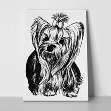 Yorkshire terrier hand drawn 201163457 a