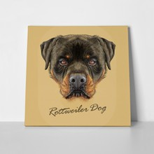 Illustrative portrait rottweiler dog 323090777 a