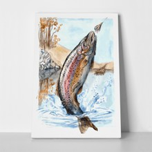 Fish trout chasing bait watercolor 240144493 a