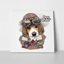 Beagle aviator helmet dog 657488032 a