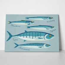 fish collection design 389750269 a