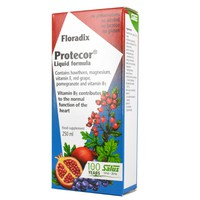 FLORADIX PROTECOR LIQUID 250ML