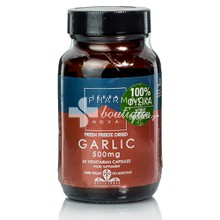 Terranova Garlic 500mg - Σκόρδο, 50caps