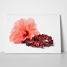Hibiscus tea and flower 203028871 a