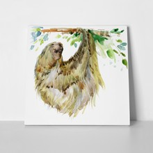 Sloth tropical animal watercolor 790342648 a