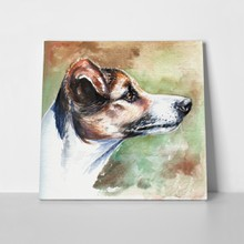 Portrait jack russell terrier watercolor 43397716 a