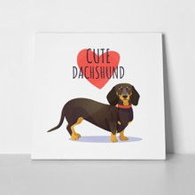 Cute dachshund dog heart 722590558 a